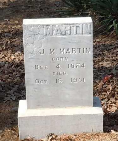 MARTIN, J M - Johnson County, Arkansas | J M MARTIN - Arkansas Gravestone Photos