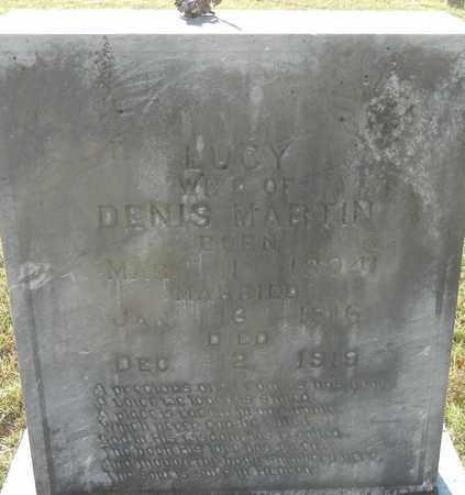 MARTIN, LUCY - Johnson County, Arkansas | LUCY MARTIN - Arkansas Gravestone Photos