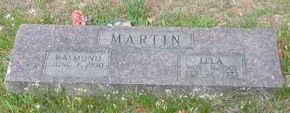 MARTIN, RAYMOND - Johnson County, Arkansas | RAYMOND MARTIN - Arkansas Gravestone Photos