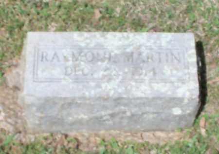 MARTIN, RAYMOND - Johnson County, Arkansas   RAYMOND MARTIN - Arkansas Gravestone Photos