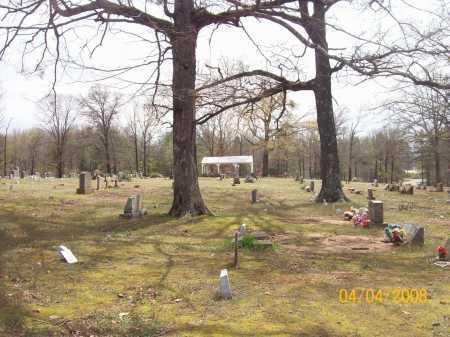 *MT VERNON CEMETERY OVERVIEW,  - Johnson County, Arkansas |  *MT VERNON CEMETERY OVERVIEW - Arkansas Gravestone Photos