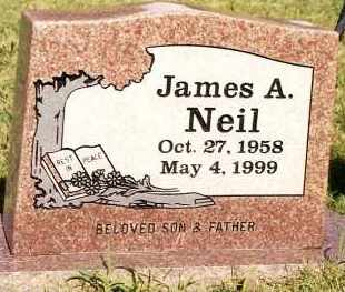 NEIL, JAMES A - Johnson County, Arkansas | JAMES A NEIL - Arkansas Gravestone Photos
