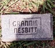 NESBITT, GRANNIE - Johnson County, Arkansas | GRANNIE NESBITT - Arkansas Gravestone Photos