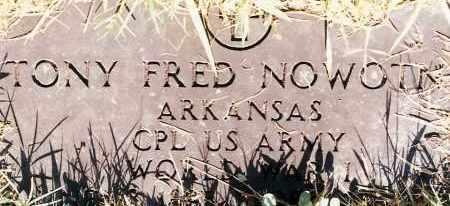 NOWOTNY  (VETERAN WWI), TONY FRED - Johnson County, Arkansas | TONY FRED NOWOTNY  (VETERAN WWI) - Arkansas Gravestone Photos
