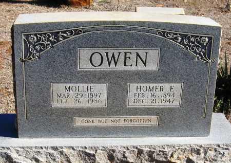 OWEN, HOMER E. - Johnson County, Arkansas | HOMER E. OWEN - Arkansas Gravestone Photos