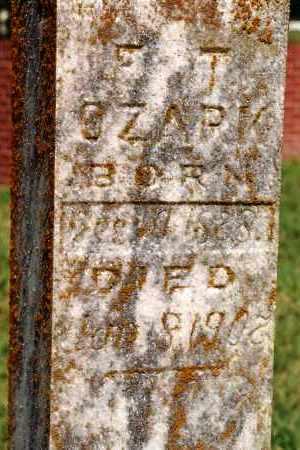 OZARK, F. T. - Johnson County, Arkansas | F. T. OZARK - Arkansas Gravestone Photos