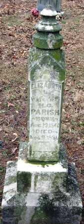 PARISH, ELIZABETH - Johnson County, Arkansas   ELIZABETH PARISH - Arkansas Gravestone Photos