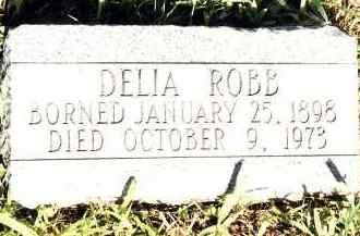 ROBB, DELIA - Johnson County, Arkansas | DELIA ROBB - Arkansas Gravestone Photos