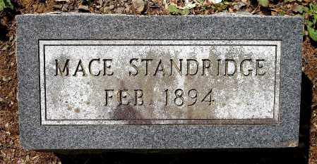 STANDRIDGE, MACE - Johnson County, Arkansas | MACE STANDRIDGE - Arkansas Gravestone Photos