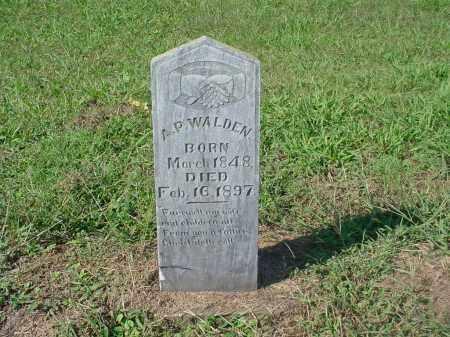 WALDEN, A.P. - Johnson County, Arkansas | A.P. WALDEN - Arkansas Gravestone Photos