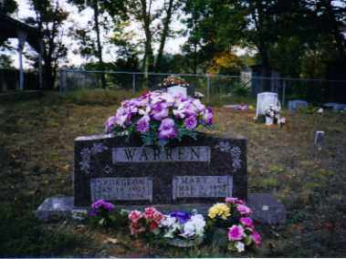WARREN, MARY - Johnson County, Arkansas | MARY WARREN - Arkansas Gravestone Photos