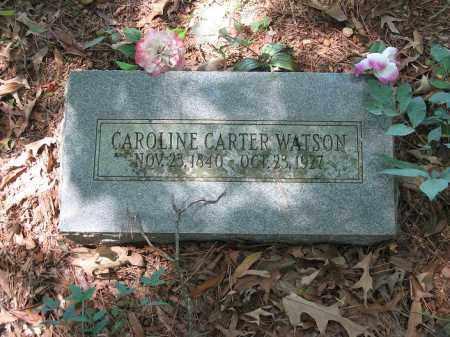 CARTER WATSON, CAROLINE - Johnson County, Arkansas | CAROLINE CARTER WATSON - Arkansas Gravestone Photos