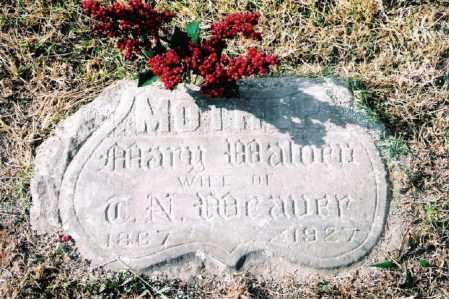 CULLUM WEAVER, MARY - Johnson County, Arkansas | MARY CULLUM WEAVER - Arkansas Gravestone Photos