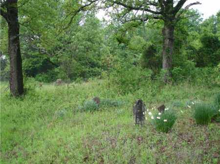 *WEST CEMETERY OVER VIEW, . - Johnson County, Arkansas | . *WEST CEMETERY OVER VIEW - Arkansas Gravestone Photos