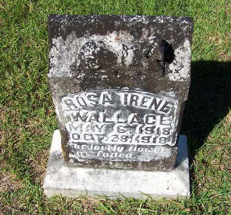 WALLACE, ROSA IRENE - Lafayette County, Arkansas | ROSA IRENE WALLACE - Arkansas Gravestone Photos