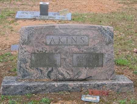 AKINS, BIVVIN M. - Lawrence County, Arkansas | BIVVIN M. AKINS - Arkansas Gravestone Photos