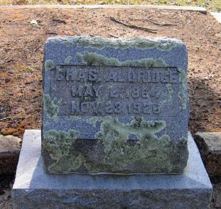 ALDRIDGE, CHARLES - Lawrence County, Arkansas | CHARLES ALDRIDGE - Arkansas Gravestone Photos