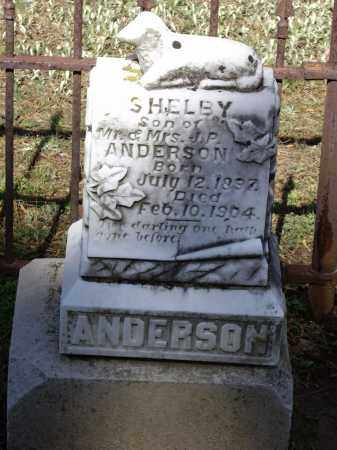 ANDERSON, SHELBY P. - Lawrence County, Arkansas | SHELBY P. ANDERSON - Arkansas Gravestone Photos