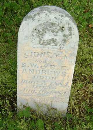 ANDREWS, SIDNEY M. - Lawrence County, Arkansas | SIDNEY M. ANDREWS - Arkansas Gravestone Photos