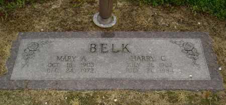 BELK, MARY ANNA - Lawrence County, Arkansas | MARY ANNA BELK - Arkansas Gravestone Photos