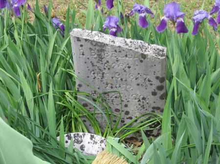 BELLAMY, LOUVENIA A. - Lawrence County, Arkansas   LOUVENIA A. BELLAMY - Arkansas Gravestone Photos