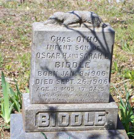 BIDDLE, CHARLES OTHO - Lawrence County, Arkansas | CHARLES OTHO BIDDLE - Arkansas Gravestone Photos