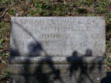 WAYLAND BIDDLE, SARAH E. - Lawrence County, Arkansas | SARAH E. WAYLAND BIDDLE - Arkansas Gravestone Photos
