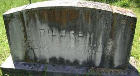 BILBREY, SUSAN FELIX - Lawrence County, Arkansas | SUSAN FELIX BILBREY - Arkansas Gravestone Photos