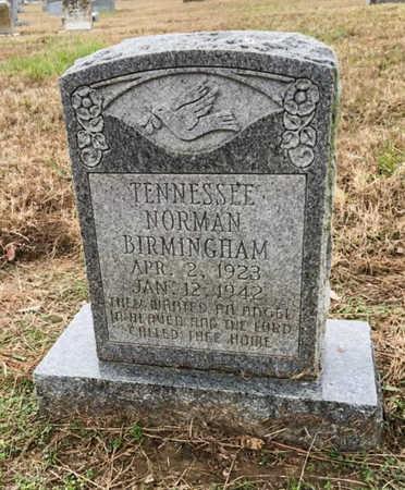 BIRMINGHAM, TENNESSEE - Lawrence County, Arkansas | TENNESSEE BIRMINGHAM - Arkansas Gravestone Photos