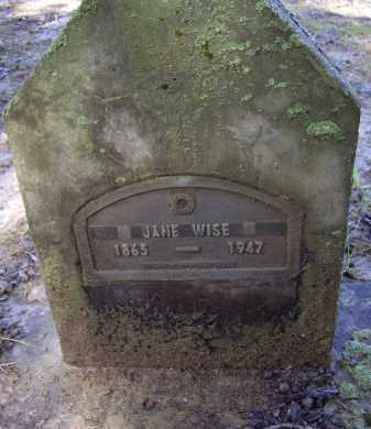 BLEVINS, JANE - Lawrence County, Arkansas | JANE BLEVINS - Arkansas Gravestone Photos