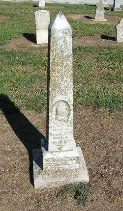 BOTTOM, WILLIAM F. - Lawrence County, Arkansas | WILLIAM F. BOTTOM - Arkansas Gravestone Photos