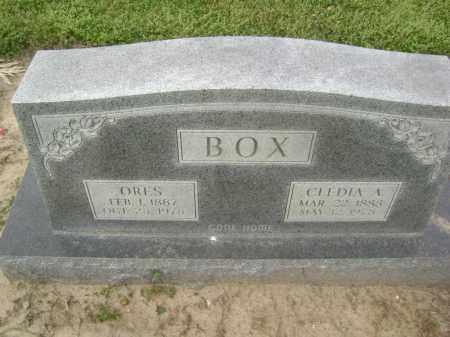 BOX, CLEDIA ALICE - Lawrence County, Arkansas | CLEDIA ALICE BOX - Arkansas Gravestone Photos