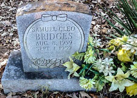 BRIDGES, SAMUEL CLEO - Lawrence County, Arkansas   SAMUEL CLEO BRIDGES - Arkansas Gravestone Photos