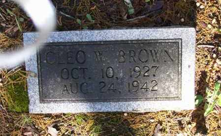 BROWN, CLEO W. - Lawrence County, Arkansas | CLEO W. BROWN - Arkansas Gravestone Photos