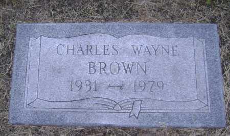 BROWN, CHARLES WAYNE - Lawrence County, Arkansas | CHARLES WAYNE BROWN - Arkansas Gravestone Photos