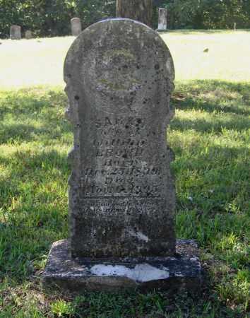 "BROWN, SARAH ""SAIDA"" - Lawrence County, Arkansas | SARAH ""SAIDA"" BROWN - Arkansas Gravestone Photos"