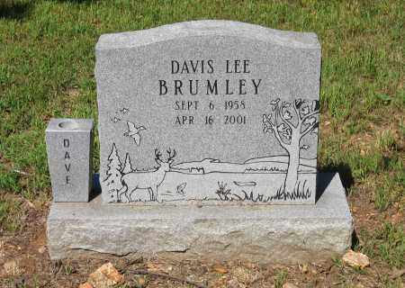 BRUMLEY, DAVIS LEE - Lawrence County, Arkansas | DAVIS LEE BRUMLEY - Arkansas Gravestone Photos