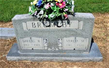 BRUMLEY, DALLAS B. - Lawrence County, Arkansas | DALLAS B. BRUMLEY - Arkansas Gravestone Photos