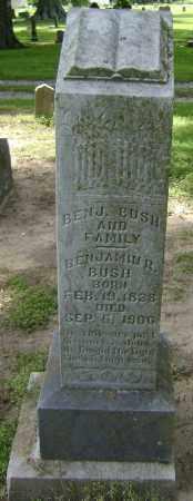 BUSH, BENJAMIN ROBERT - Lawrence County, Arkansas   BENJAMIN ROBERT BUSH - Arkansas Gravestone Photos