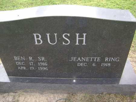 BUSH SR, BEN ROBERT - Lawrence County, Arkansas | BEN ROBERT BUSH SR - Arkansas Gravestone Photos