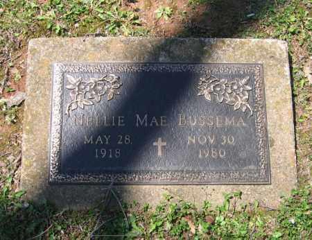 JOHNSON BUSSEMA, NELLIE MAE EVELYN - Lawrence County, Arkansas | NELLIE MAE EVELYN JOHNSON BUSSEMA - Arkansas Gravestone Photos