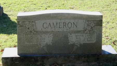 CAMERON, MINNIE MARGARET - Lawrence County, Arkansas | MINNIE MARGARET CAMERON - Arkansas Gravestone Photos
