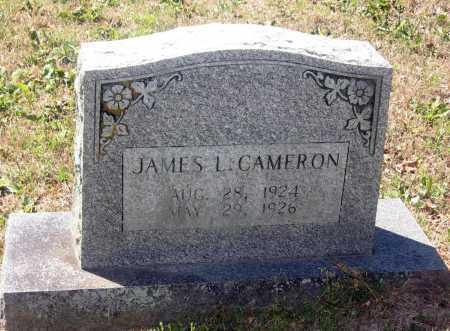 CAMERON, JAMES LAVERN - Lawrence County, Arkansas | JAMES LAVERN CAMERON - Arkansas Gravestone Photos