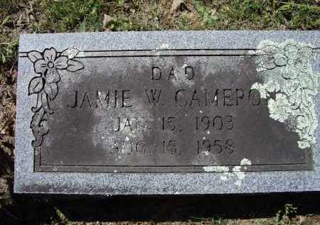 CAMERON, JAMIE WARREN - Lawrence County, Arkansas | JAMIE WARREN CAMERON - Arkansas Gravestone Photos