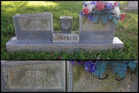 CAMPBELL, AGNESE E. - Lawrence County, Arkansas | AGNESE E. CAMPBELL - Arkansas Gravestone Photos