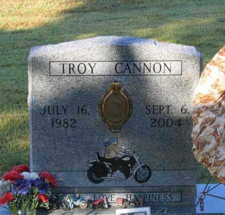 CANNON, CLINTON TROY - Lawrence County, Arkansas | CLINTON TROY CANNON - Arkansas Gravestone Photos
