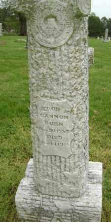 CANNON, HEROD M. - Lawrence County, Arkansas | HEROD M. CANNON - Arkansas Gravestone Photos