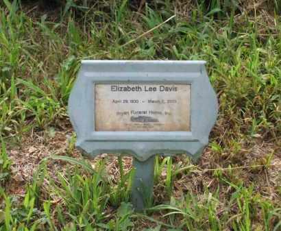 LEE CARMICHAEL, ELIZABETH - Lawrence County, Arkansas | ELIZABETH LEE CARMICHAEL - Arkansas Gravestone Photos