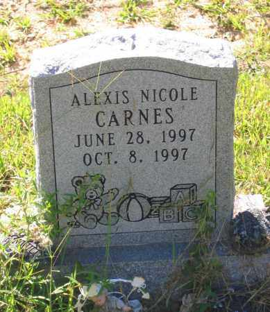 CARNES, ALEXIS NICOLE - Lawrence County, Arkansas | ALEXIS NICOLE CARNES - Arkansas Gravestone Photos