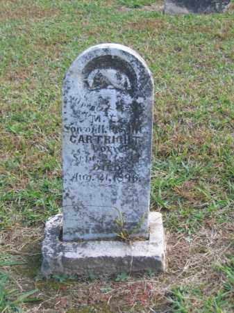 CARTRIGHT, M. E. - Lawrence County, Arkansas | M. E. CARTRIGHT - Arkansas Gravestone Photos